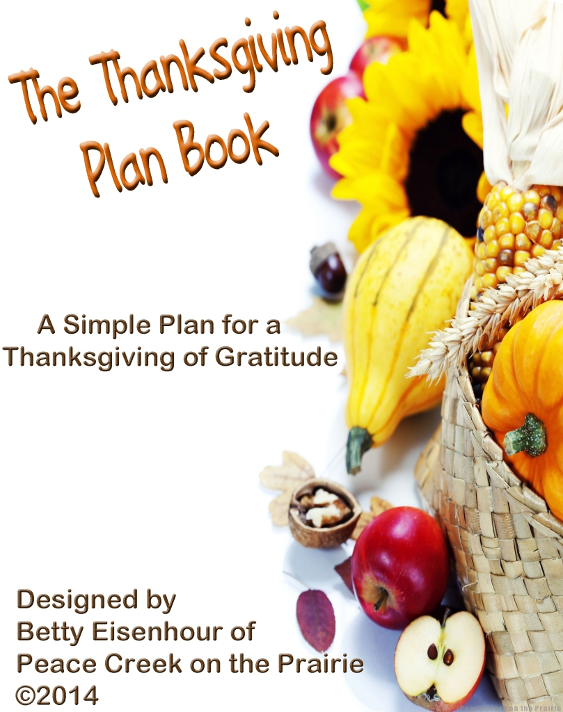 The Thanksgiving Plan Book  Pre-Launch sale 40% off 10/31 -11/2