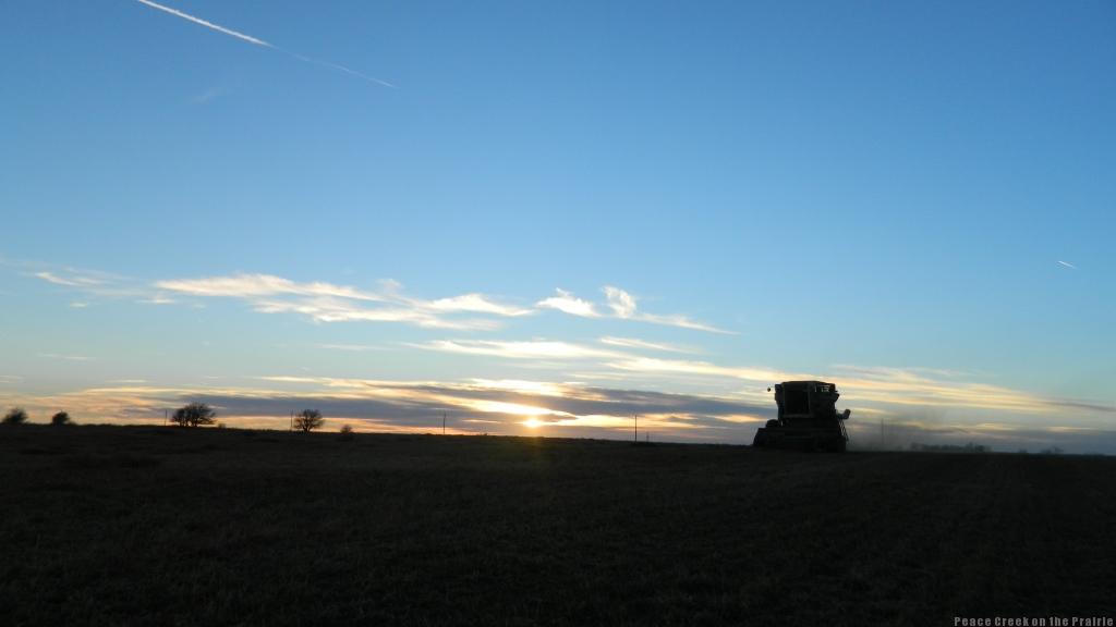 FarmLife Tuesday Dec. 2