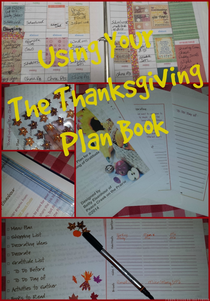 Using The Thanksgiving Plan Book