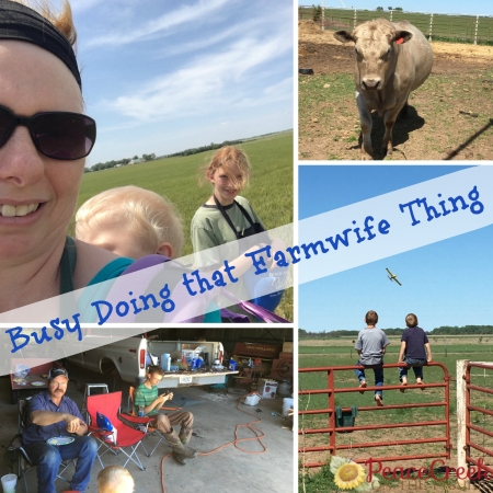 Busy Doing that Farm Wife Thing…