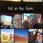 Fall Around the Farm